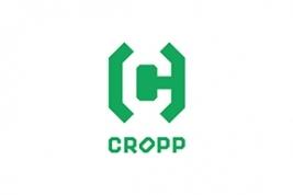 Cropp Town