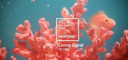 Culoarea anului 2019, te invita in offline.