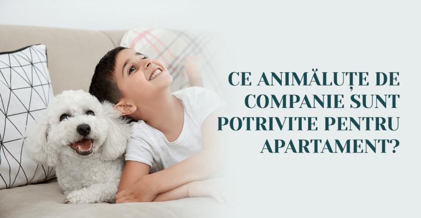 Ce animalute de companie sunt potrivite pentru apartament?